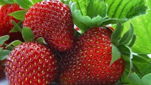 strawberry_berry_sweet_ripe_95856_602x339